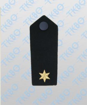 Schulterklappen mit 1 Stern gold