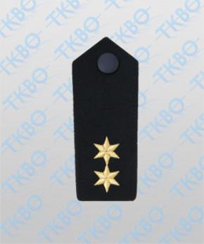 Schulterklappen mit 2 Sterne gold