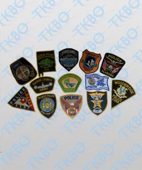 10 Sammlerabzeichen Polizei USA